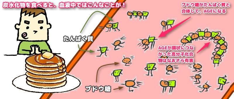 炭水化物摂取後に起こる糖化とAGE生成プロセス。AGEが鎖状につながった高分子化合物はより危険