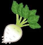 てん菜とラフィノース
